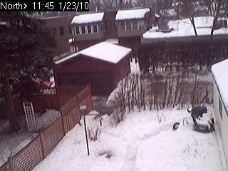 picture at 1/23 11:00